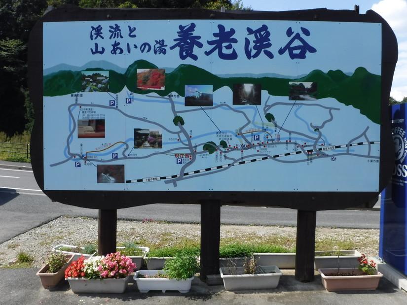 ホウリーウッズ久留里キャンプ村 (24)