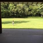 夏休みに香川県はミシュラン最高三つ星評価の栗林公園に行ってきた
