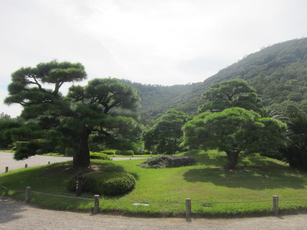 栗林公園木