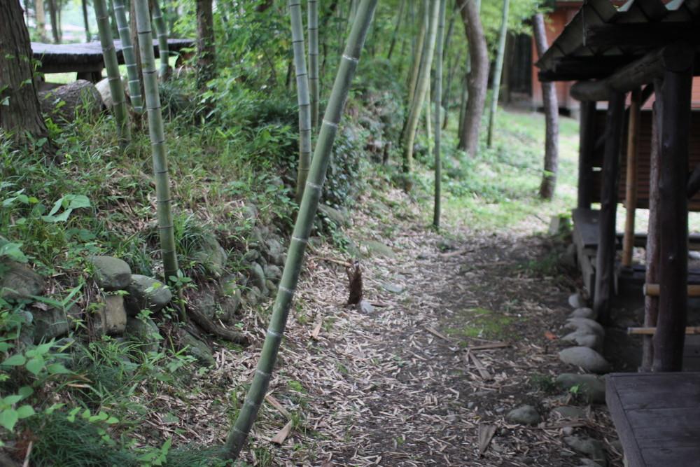 長瀞オートキャンプ場と長瀞ライン下り (21)