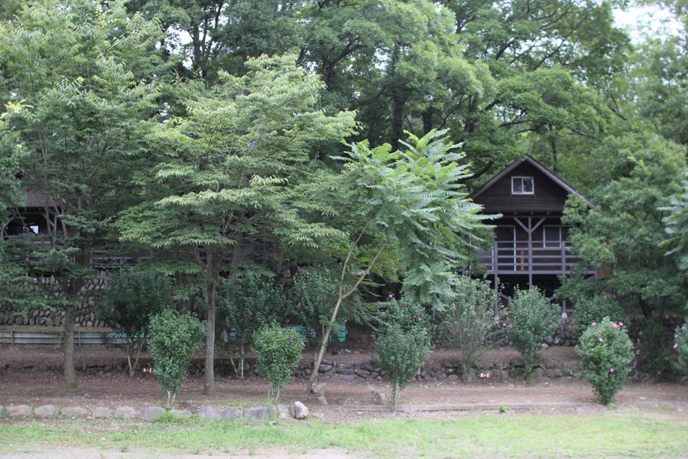 長瀞オートキャンプ場と長瀞ライン下り (51)
