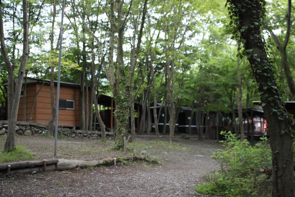 長瀞オートキャンプ場と長瀞ライン下り (66)