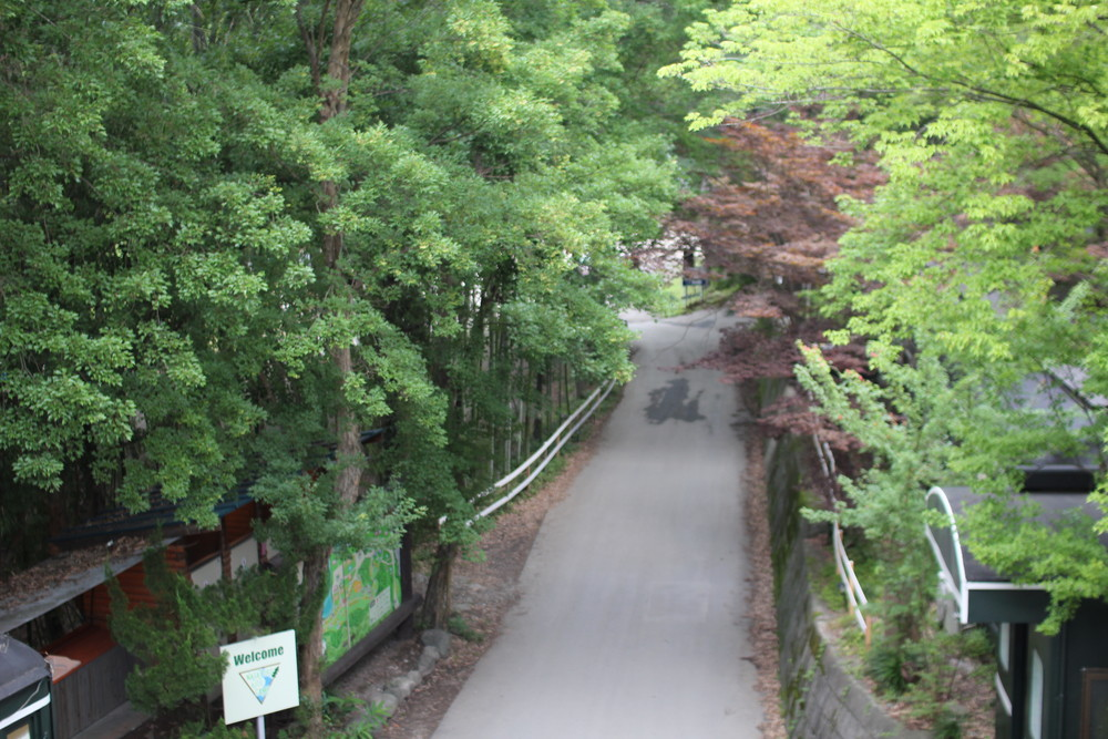 長瀞オートキャンプ場長瀞ライン下りB (5)