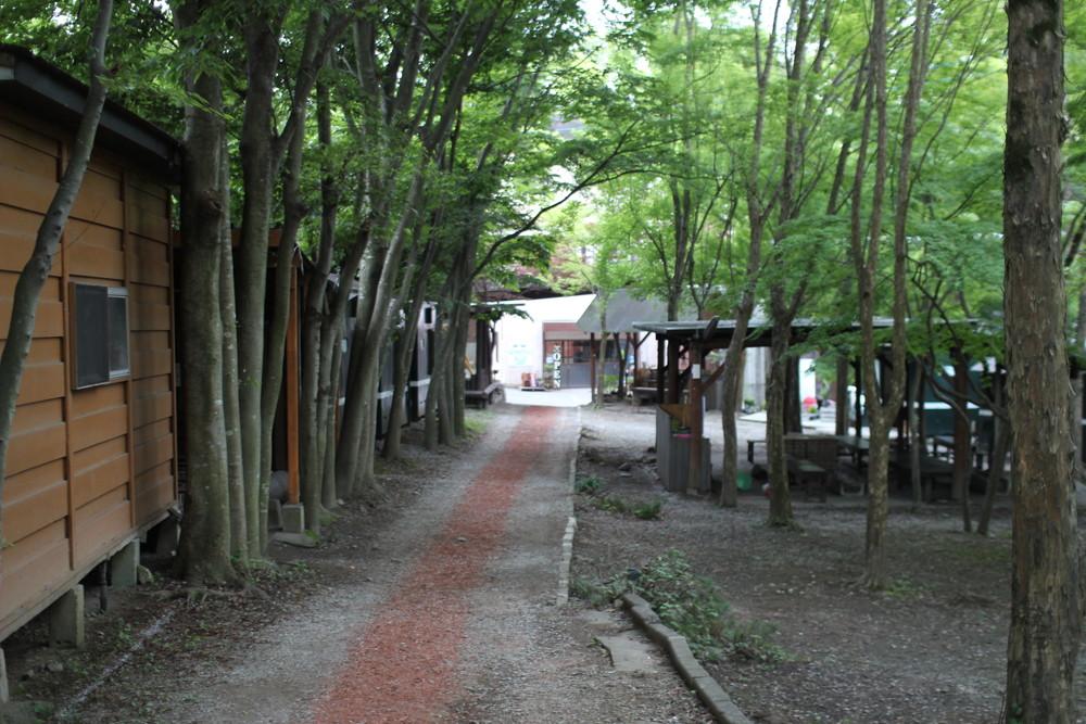 長瀞オートキャンプ場と長瀞ライン下り (14)