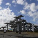 UFO公園!?富津公園にて貝殻採取