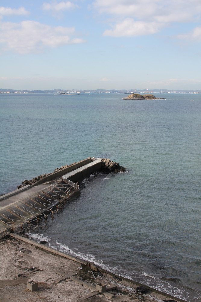 富津公園貝殻採取