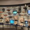 千葉県立中央博物館分館の海の博物館がすごい