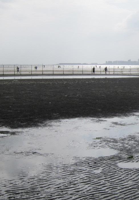 船橋海浜公園