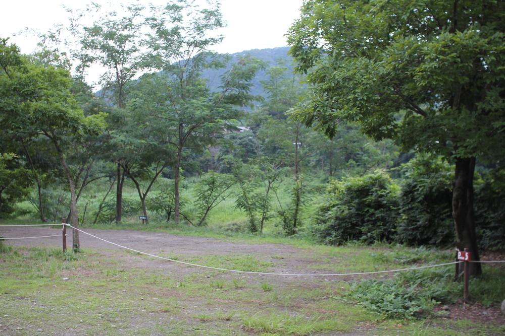 長瀞オートキャンプ場と長瀞ライン下り (45)
