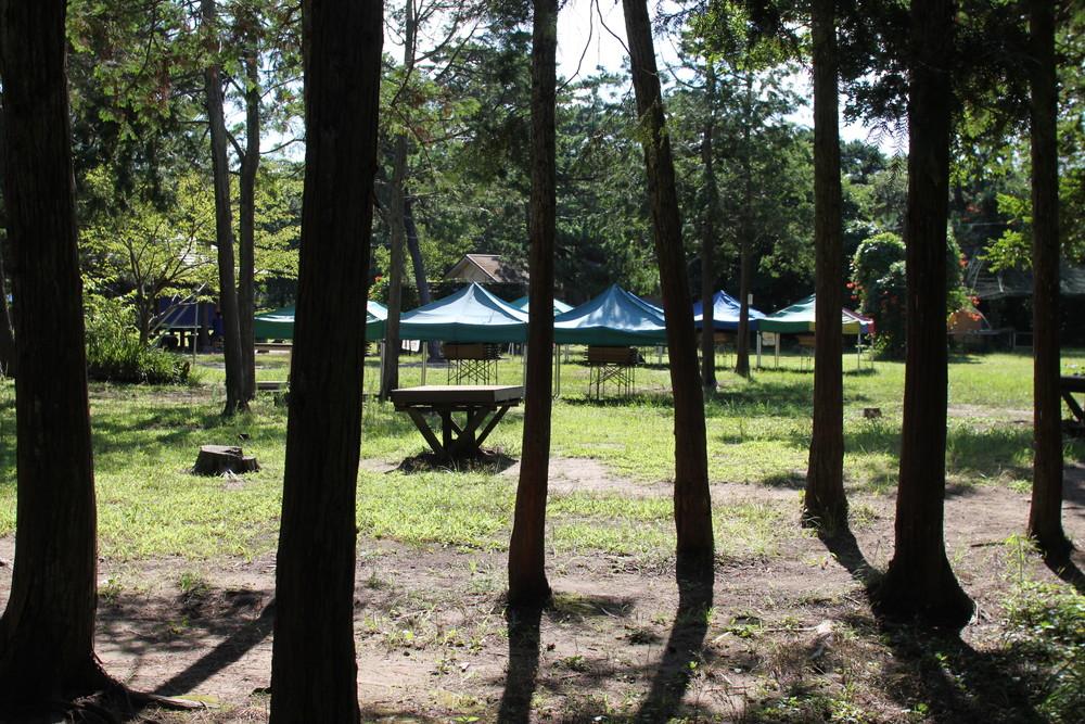 富津公園キャンプ場 (31)