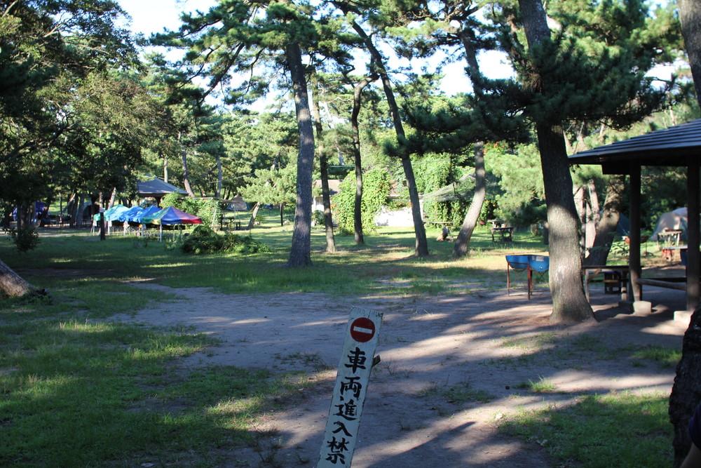 富津公園キャンプ場 (16)