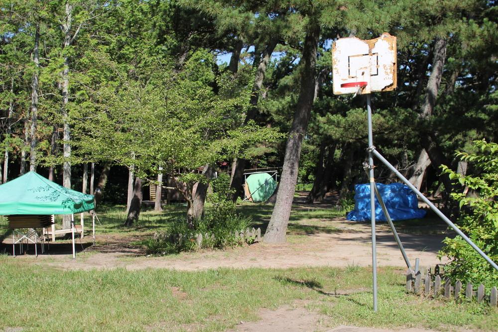 富津公園キャンプ場 (35)