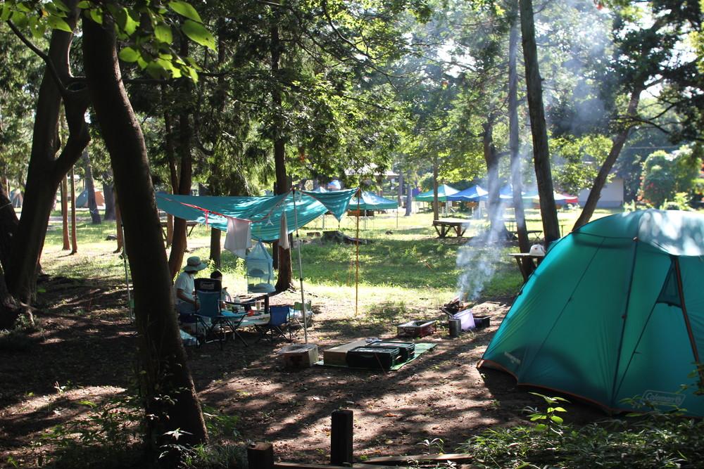 富津公園キャンプ場 (29)