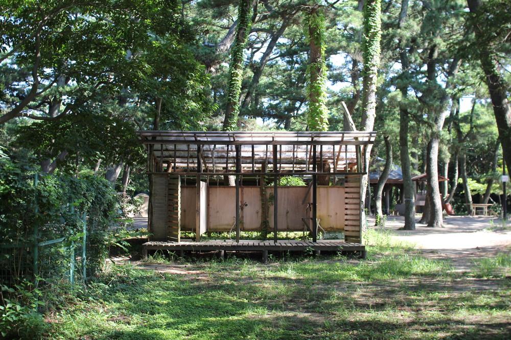 富津公園キャンプ場 (30)