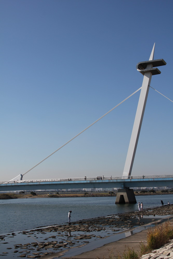 葛西臨海公園ブログ
