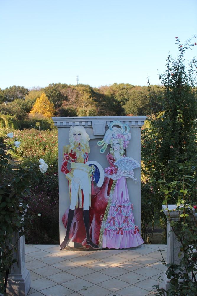 11月の京成バラ園開花情報ベルバラ