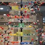 千葉県立現代産業科学館で雷と液体窒素の実験を見てきました