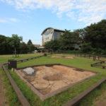 飛ノ台史跡公園博物館で貝塚を見た