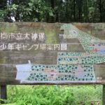 千葉県立船橋県民の森青少年キャンプ場で森キャンプ(無料)