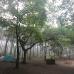 ふたたび昭和の森フォレストビレッジへ~夏の手抜きキャンプ@7月