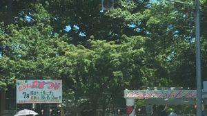 船橋市高根台の近隣公園お祭り情報 2017年7月15日・16日 第51回高根台団地自治会・高根夏祭り(たかね夏まつり)