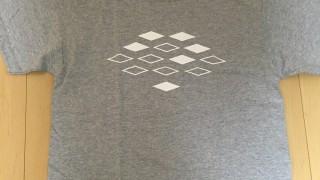 はてなTシャツ2016グレーが届き増田 (00085-CVT)